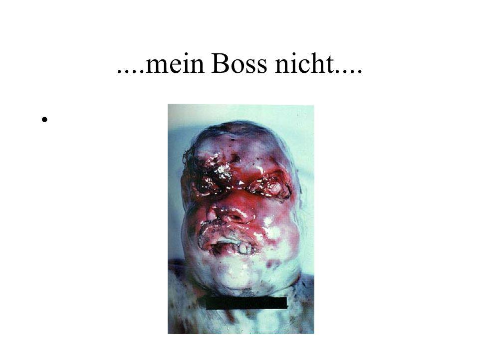 ....mein Boss nicht....