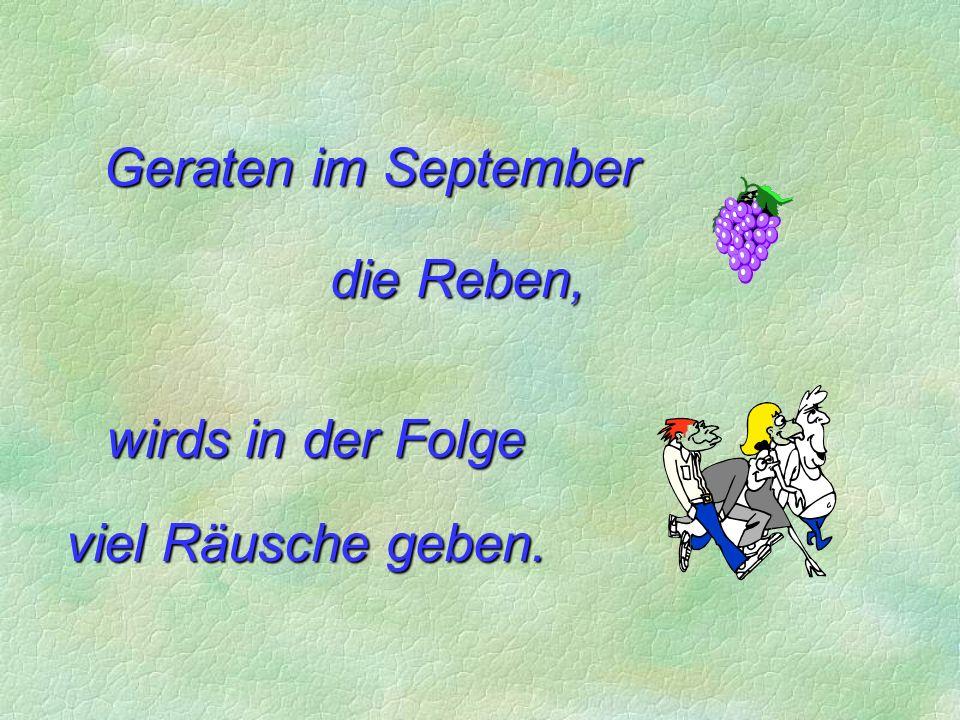 Geraten im September die Reben, wirds in der Folge viel Räusche geben.