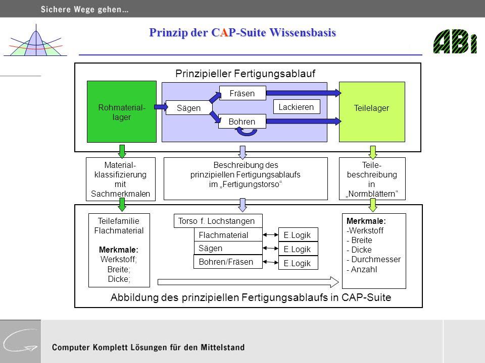 Prinzip der CAP-Suite Wissensbasis
