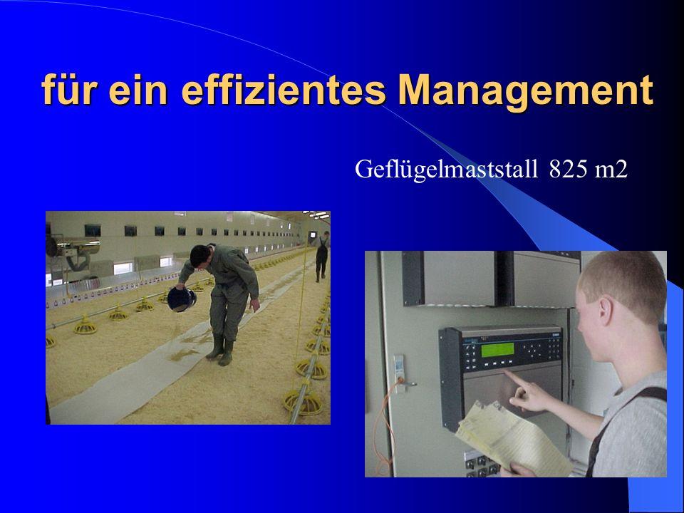 für ein effizientes Management