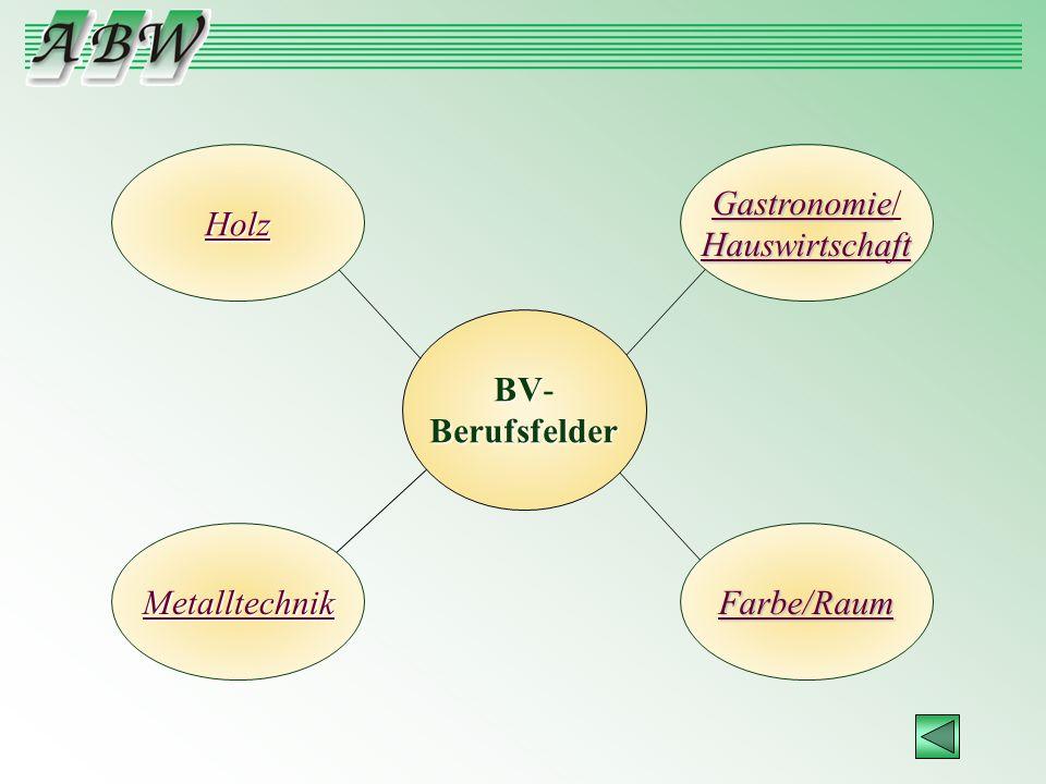 Holz Gastronomie/ Hauswirtschaft BV- Berufsfelder Metalltechnik Farbe/Raum
