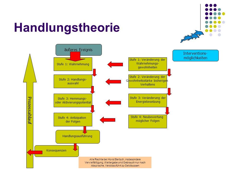 Handlungstheorie Prozessablauf äußeres Ereignis Interventions-