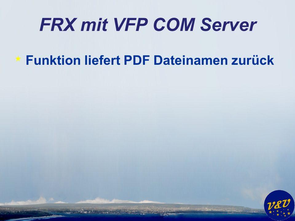 FRX mit VFP COM Server Funktion liefert PDF Dateinamen zurück