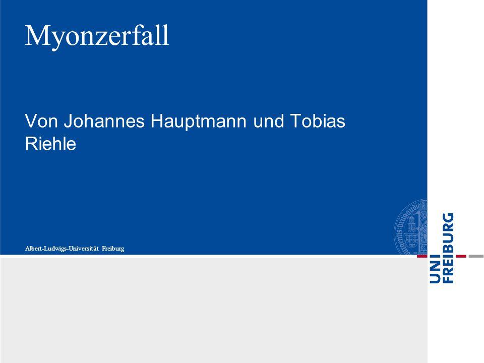 Von Johannes Hauptmann und Tobias Riehle