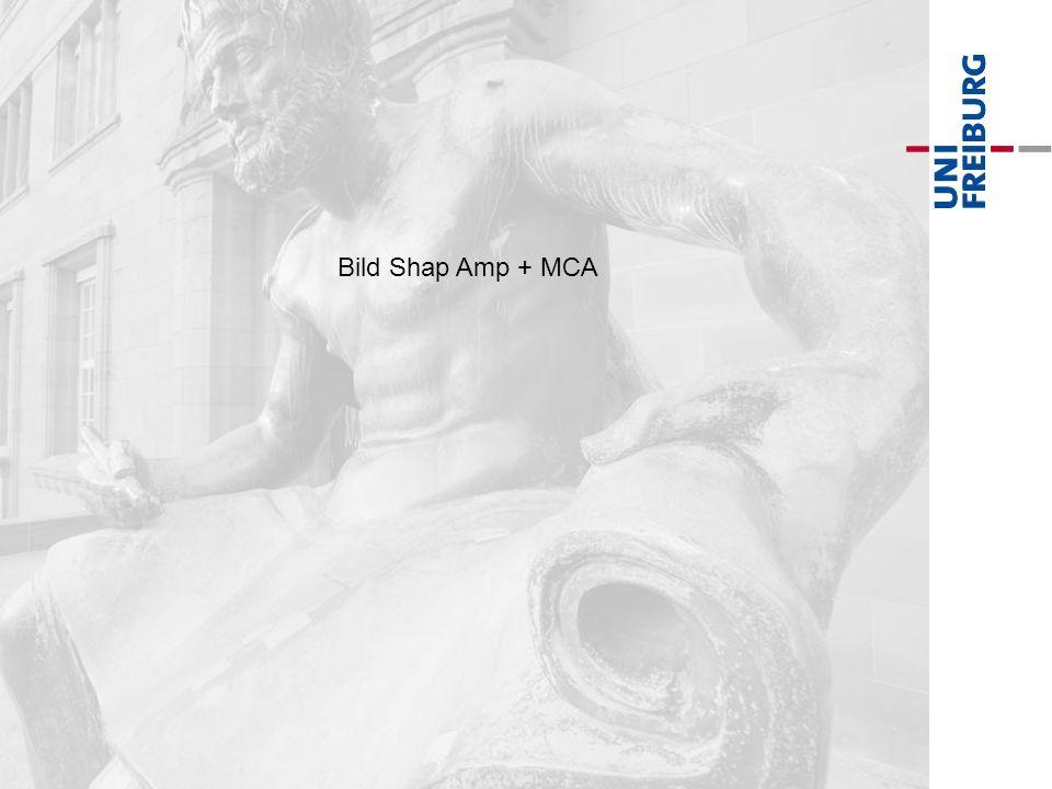 Bild Shap Amp + MCA