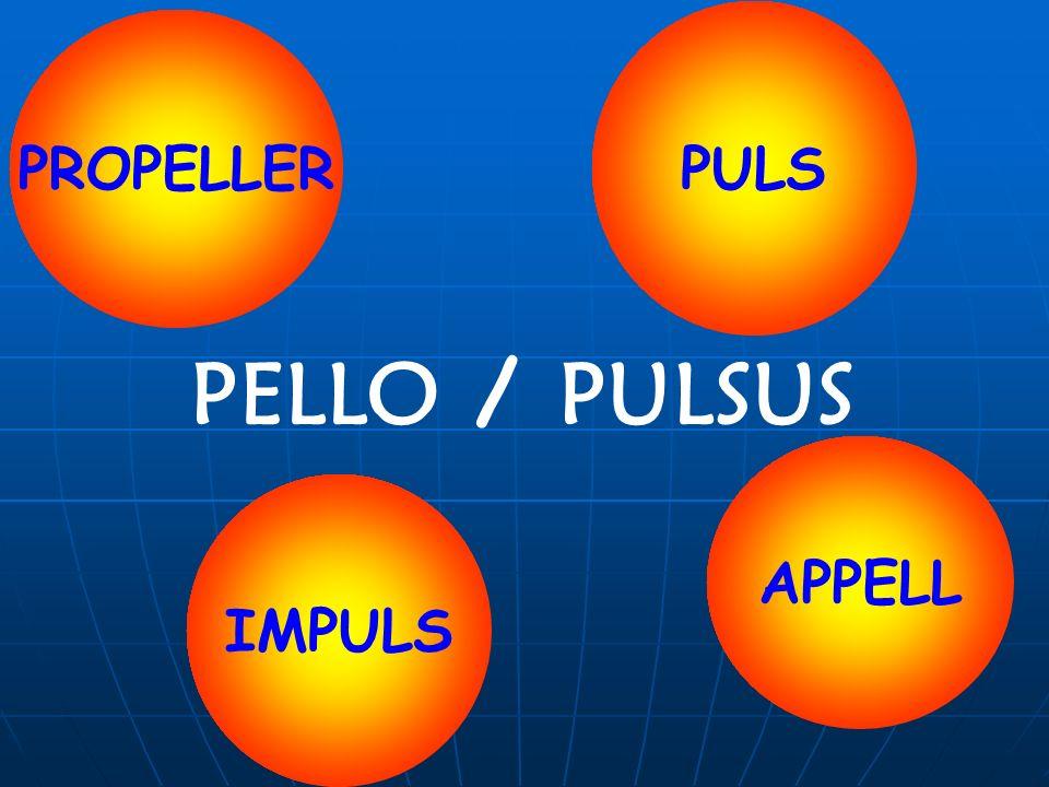 PELLO / PULSUS PULS PROPELLER APPELL IMPULS