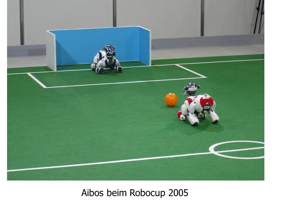 Automatisierung Aibos beim Robocup 2005