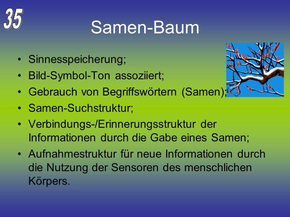 Samen-Baum 35 Sinnesspeicherung; Bild-Symbol-Ton assoziiert;