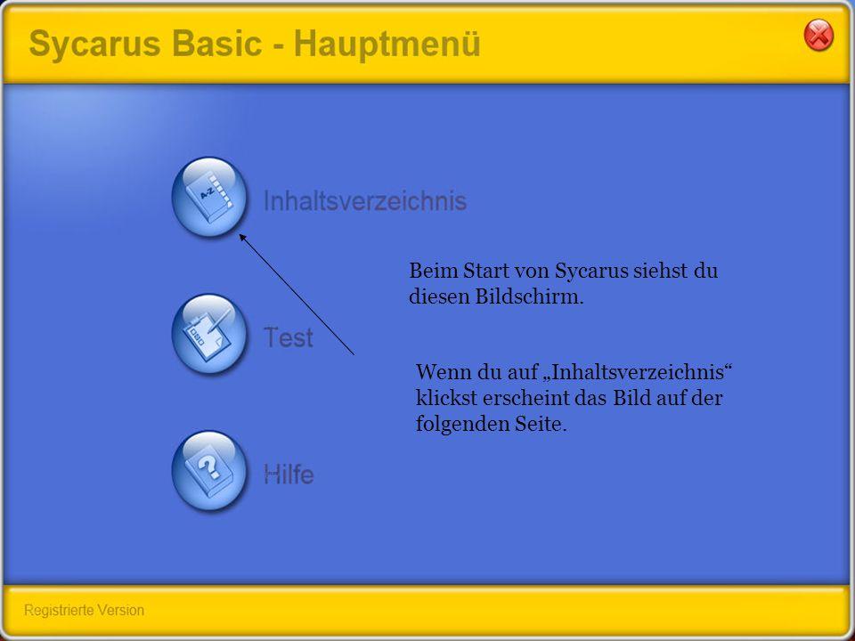 Beim Start von Sycarus siehst du diesen Bildschirm.
