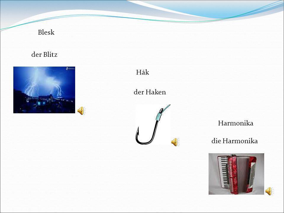 Blesk der Blitz Hák der Haken Harmonika die Harmonika