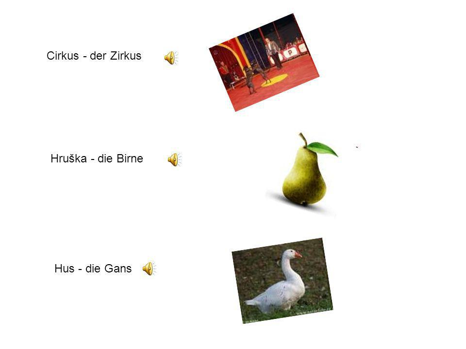 Cirkus - der Zirkus Hruška - die Birne Hus - die Gans