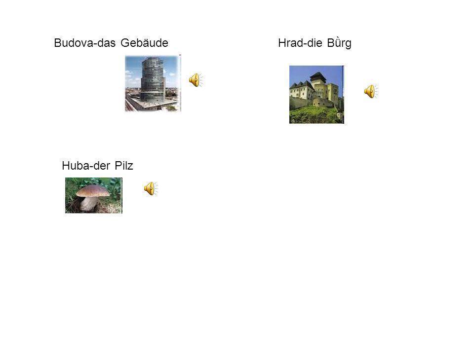 Budova-das Gebäude Hrad-die Bǜrg Huba-der Pilz