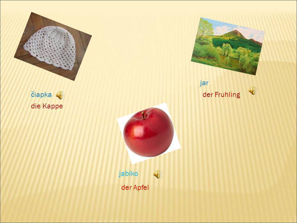 jar čiapka der Fruhling die Kappe jablko der Apfel