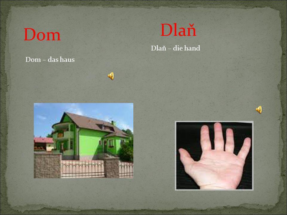 Dlaň Dom Dlaň – die hand Dom – das haus
