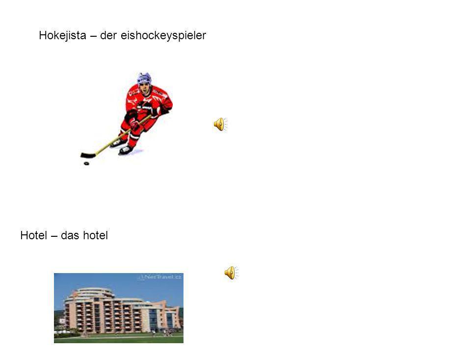 Hokejista – der eishockeyspieler