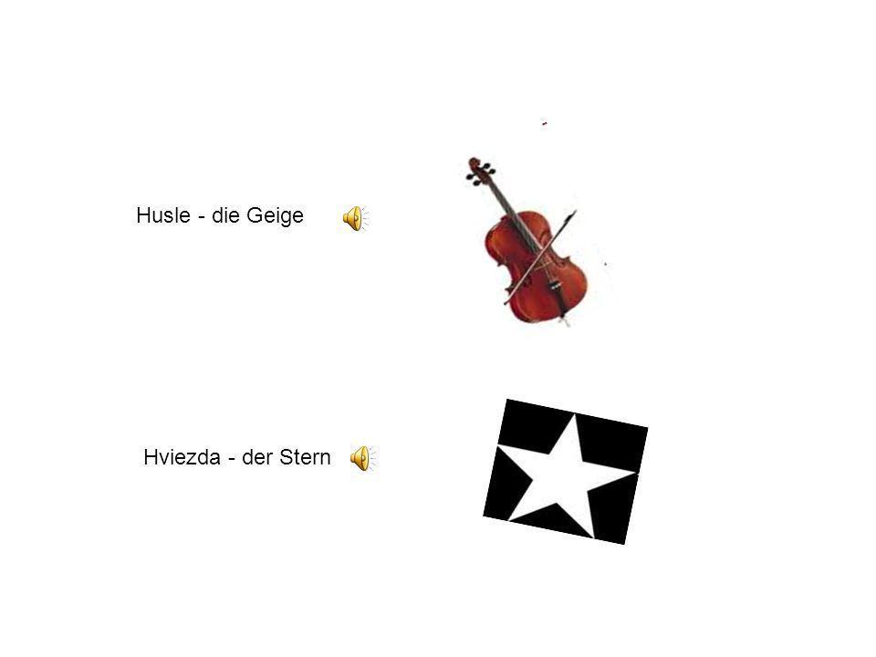 Husle - die Geige Hviezda - der Stern
