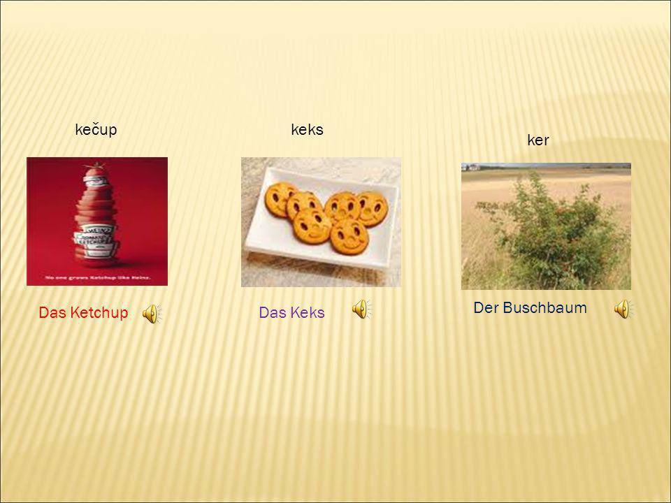 kečup keks ker Der Buschbaum Das Ketchup Das Keks