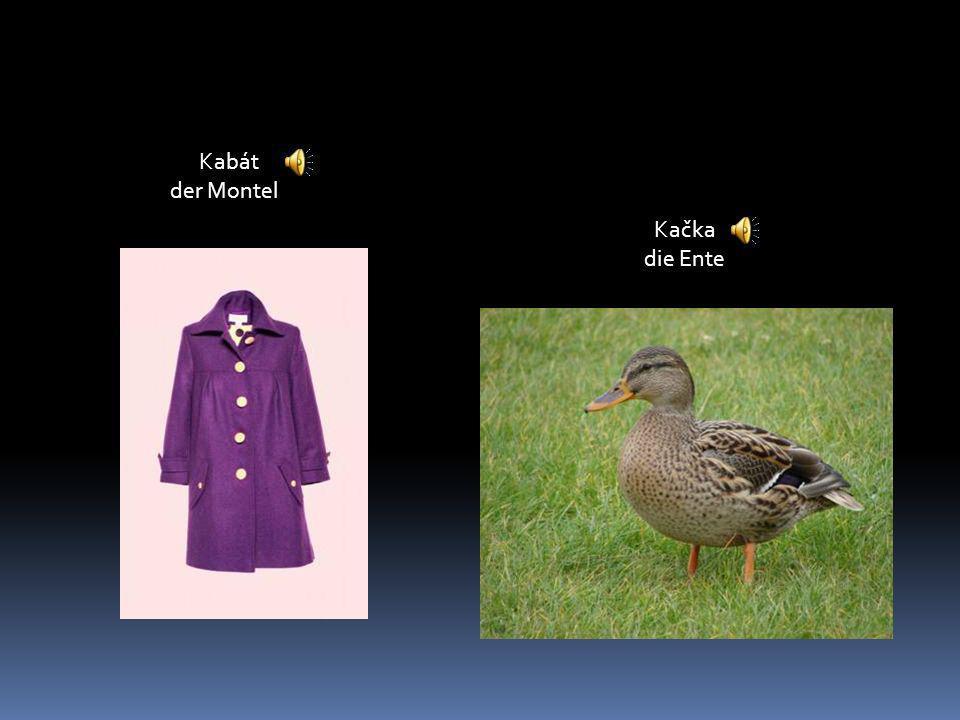 Kabát der Montel Kačka die Ente