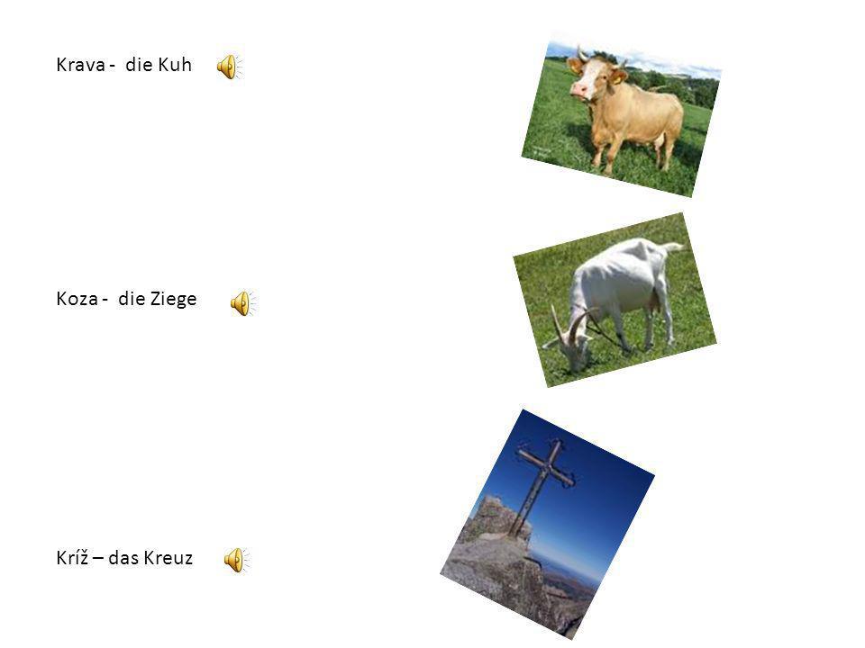 Krava - die Kuh Koza - die Ziege Kríž – das Kreuz