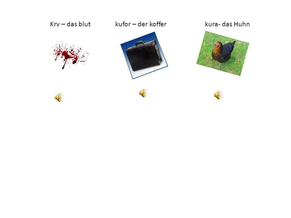 Krv – das blut kufor – der koffer kura- das Huhn