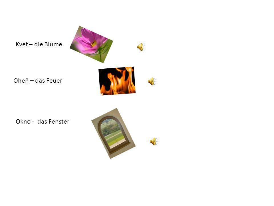 Kvet – die Blume Oheň – das Feuer Okno - das Fenster