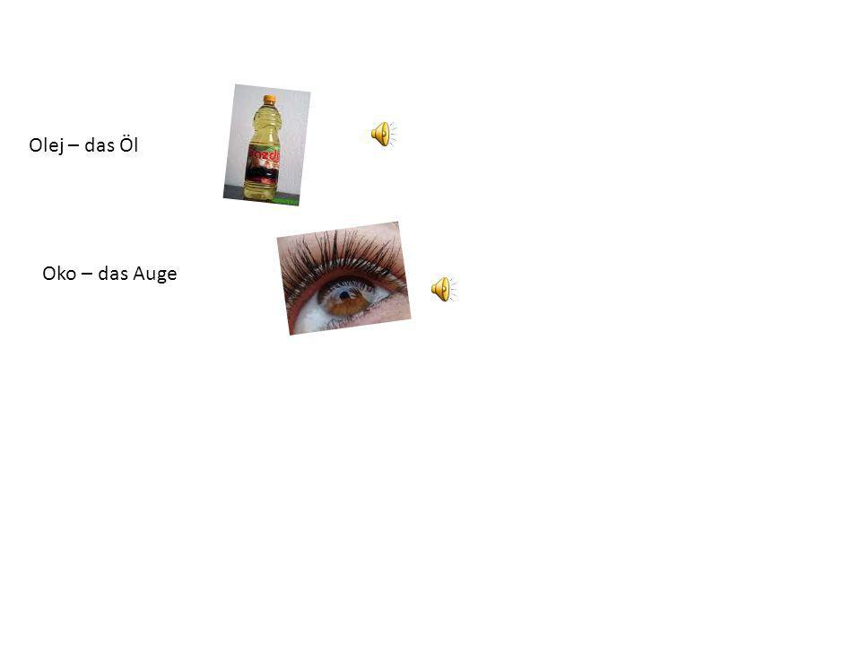 Olej – das Öl Oko – das Auge