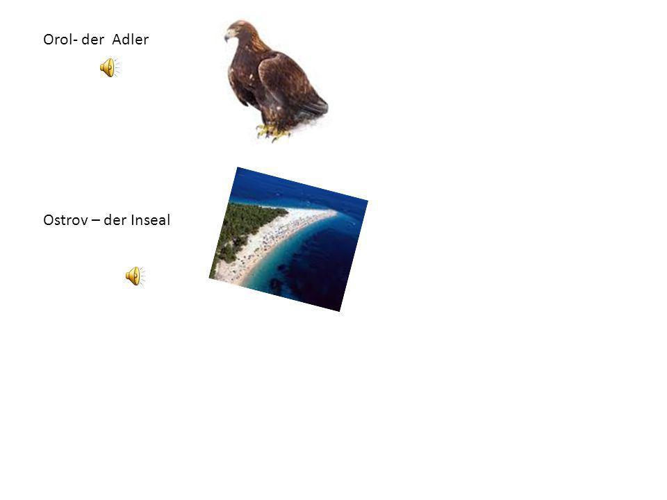 Orol- der Adler Ostrov – der Inseal
