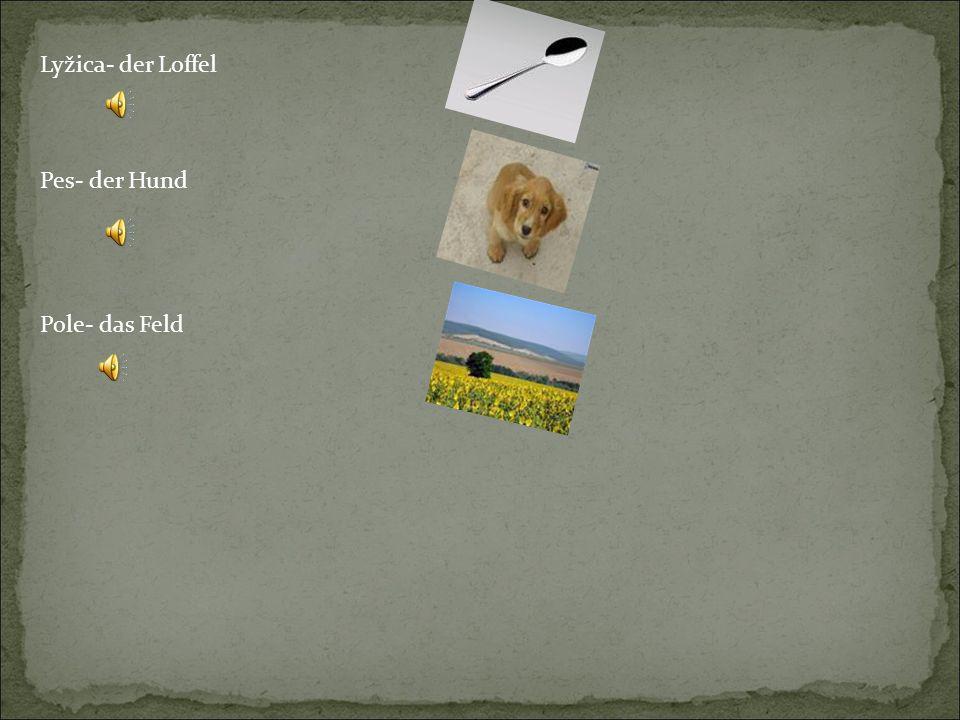 Lyžica- der Loffel Pes- der Hund Pole- das Feld