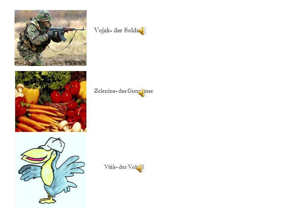 Vojak- der Soldat Zelenina- das Gumumse Vták- der Volgel