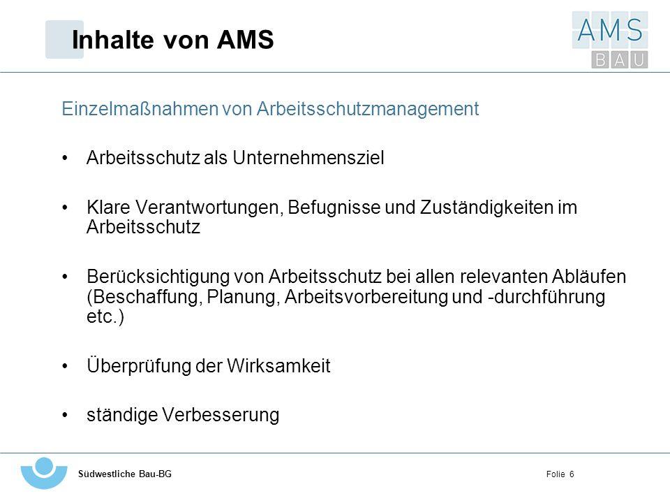 Inhalte von AMS Einzelmaßnahmen von Arbeitsschutzmanagement