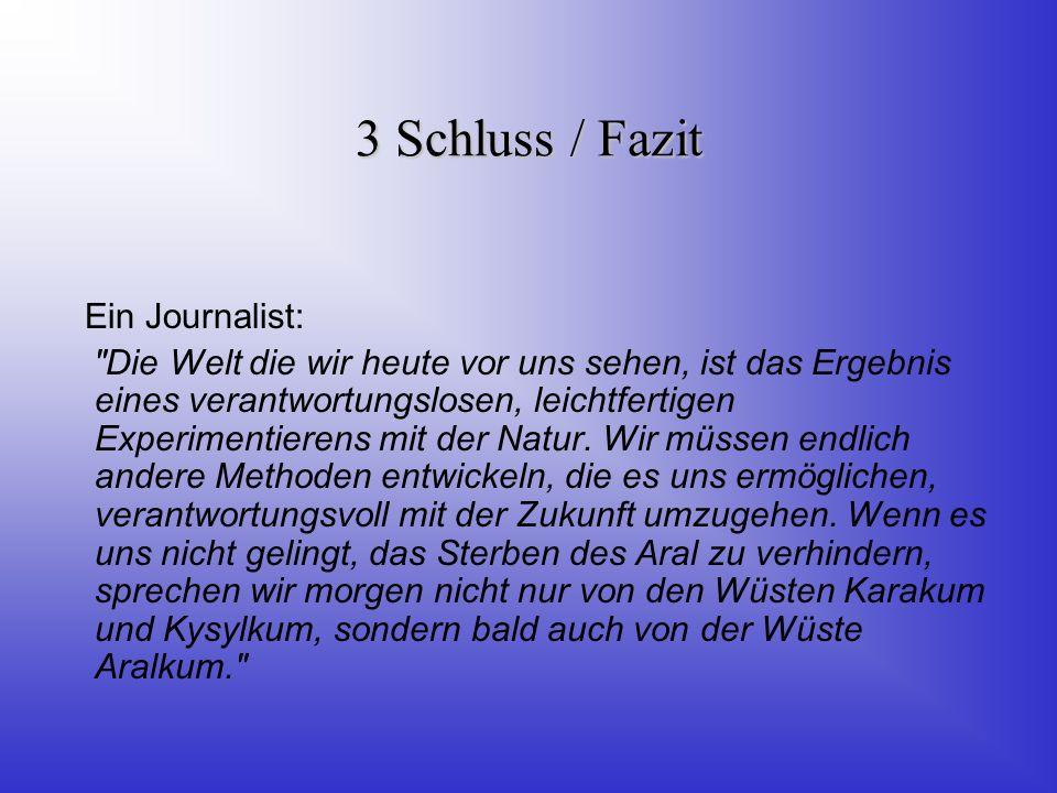 3 Schluss / Fazit Ein Journalist: