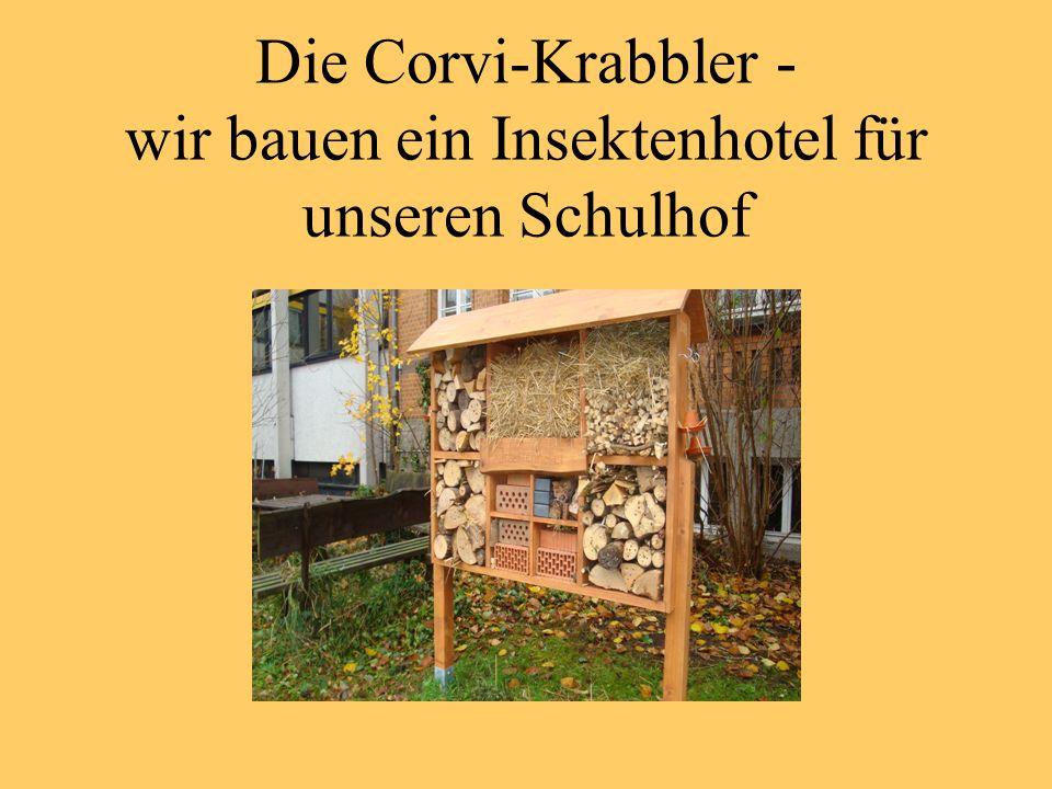 die corvi krabbler wir bauen ein insektenhotel f r unseren schulhof ppt herunterladen. Black Bedroom Furniture Sets. Home Design Ideas