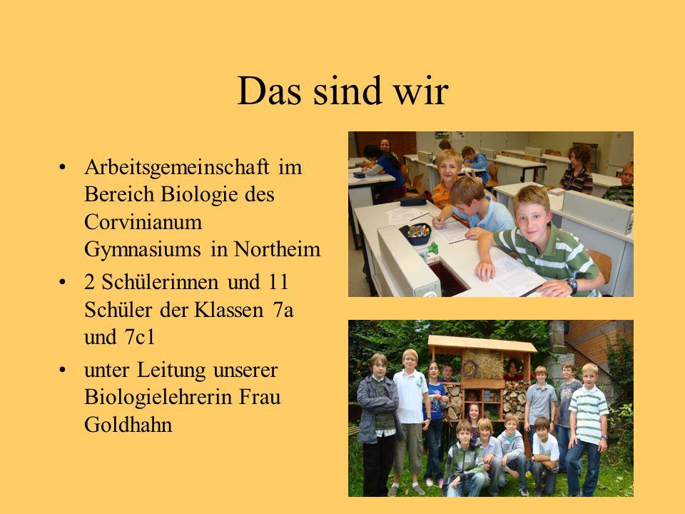 Das sind wir Arbeitsgemeinschaft im Bereich Biologie des Corvinianum Gymnasiums in Northeim. 2 Schülerinnen und 11 Schüler der Klassen 7a und 7c1.