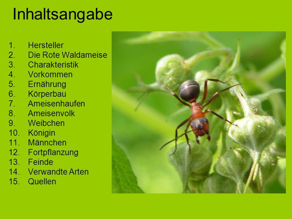 Inhaltsangabe Hersteller Die Rote Waldameise Charakteristik Vorkommen