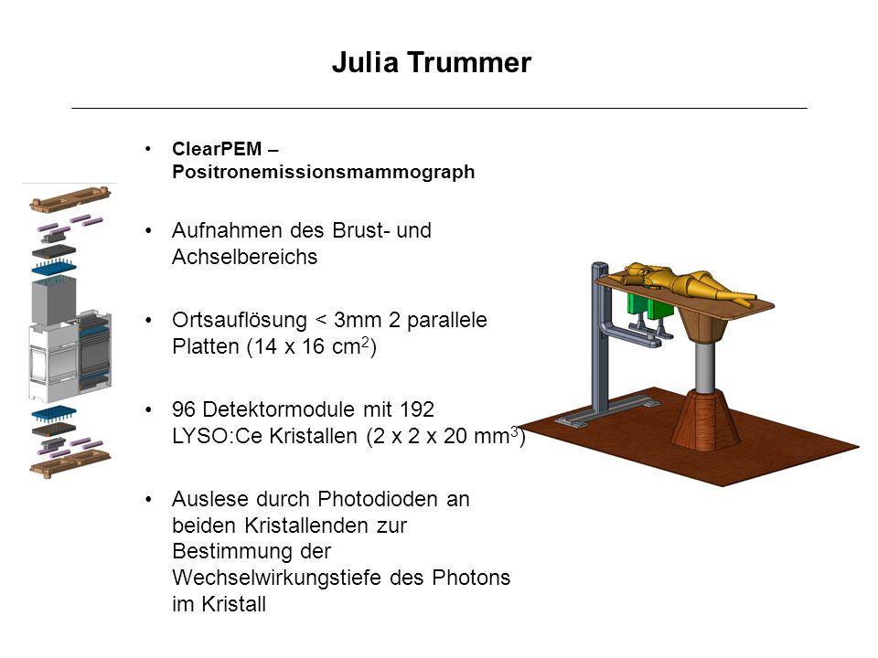 Julia Trummer Aufnahmen des Brust- und Achselbereichs