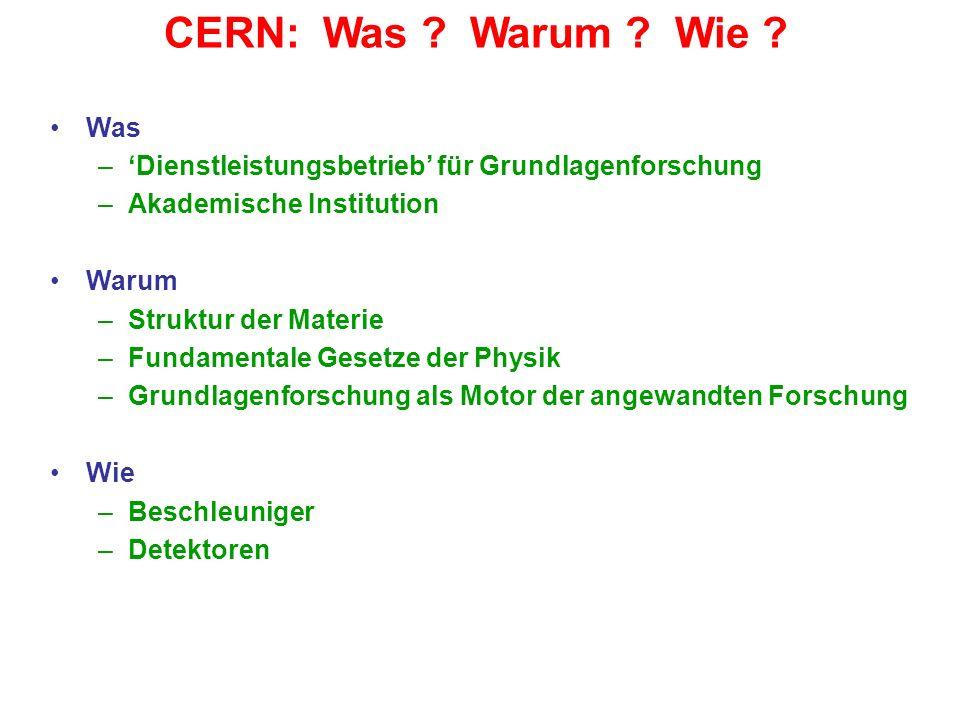 CERN: Was Warum Wie Was. 'Dienstleistungsbetrieb' für Grundlagenforschung. Akademische Institution.