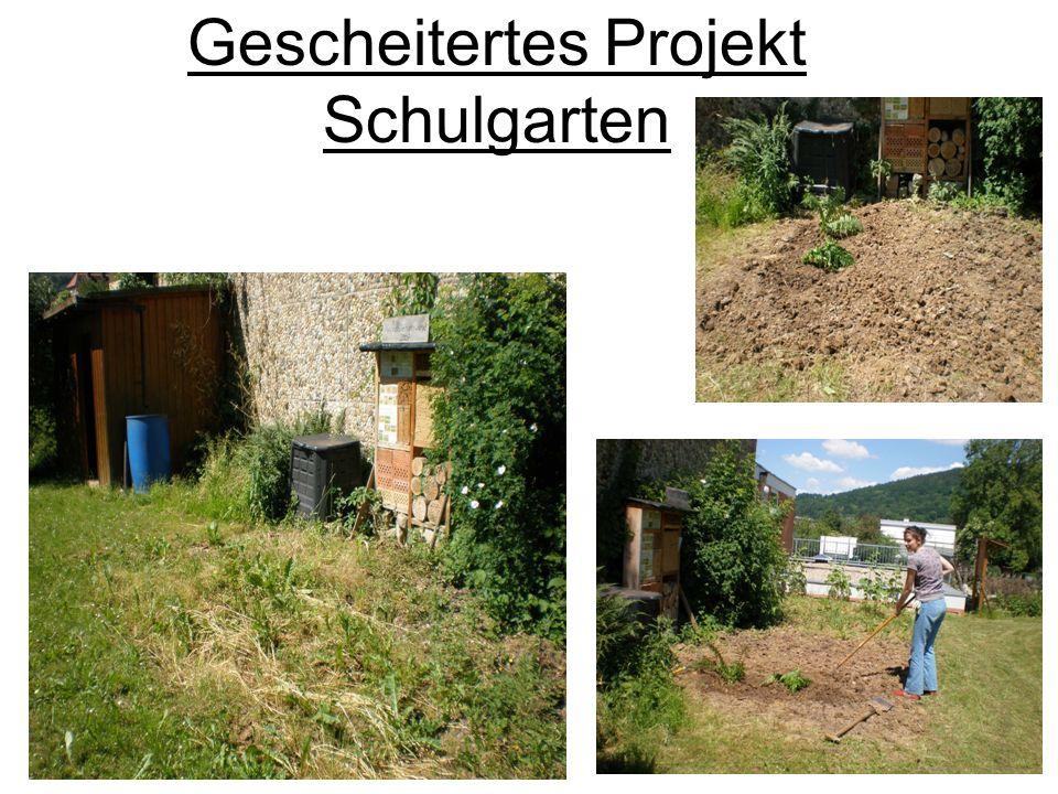 Gescheitertes Projekt Schulgarten