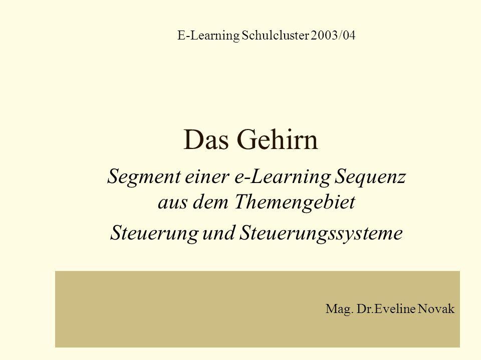 Das Gehirn Segment einer e-Learning Sequenz aus dem Themengebiet