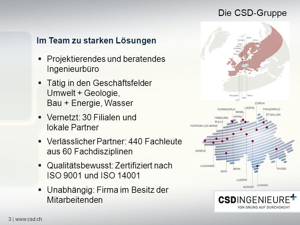Die CSD-Gruppe Im Team zu starken Lösungen