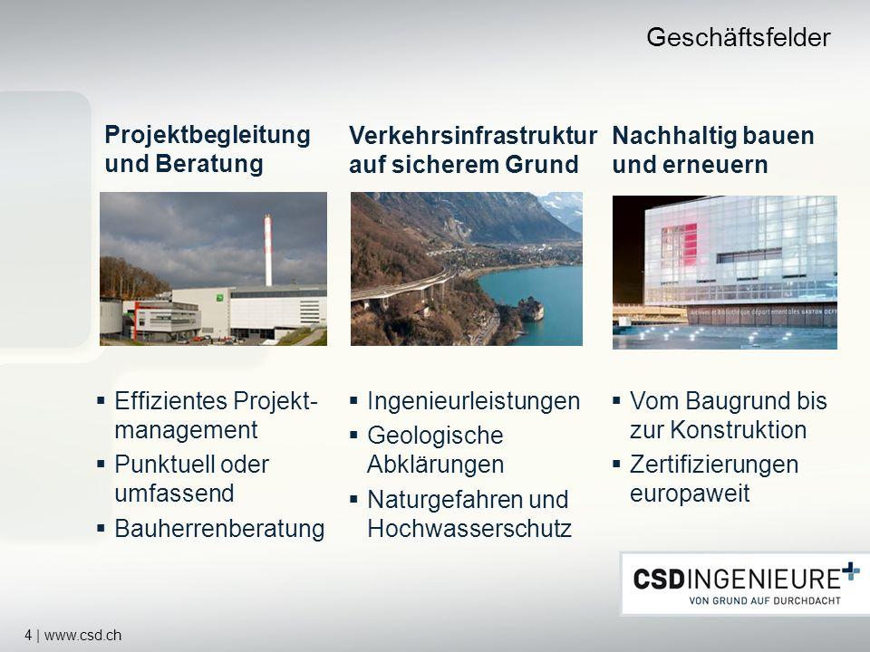 Geschäftsfelder Projektbegleitung und Beratung