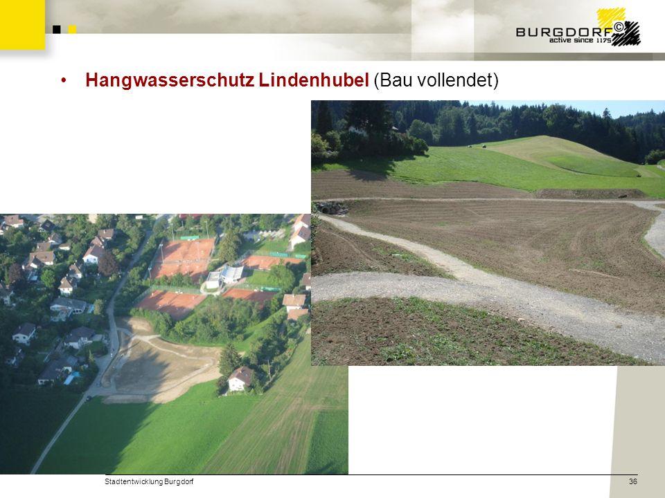 Hangwasserschutz Lindenhubel (Bau vollendet)