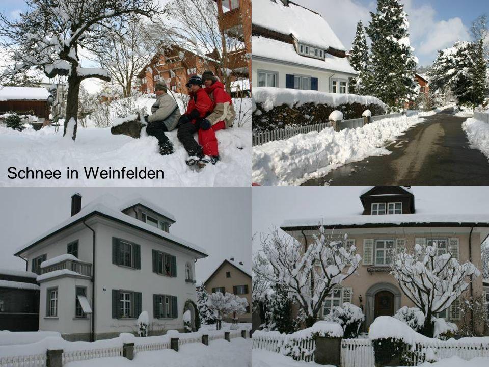 Schnee in Weinfelden