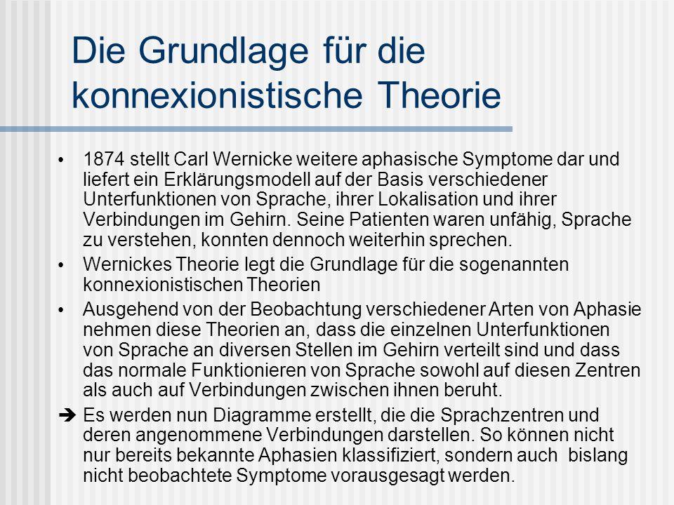 Die Grundlage für die konnexionistische Theorie