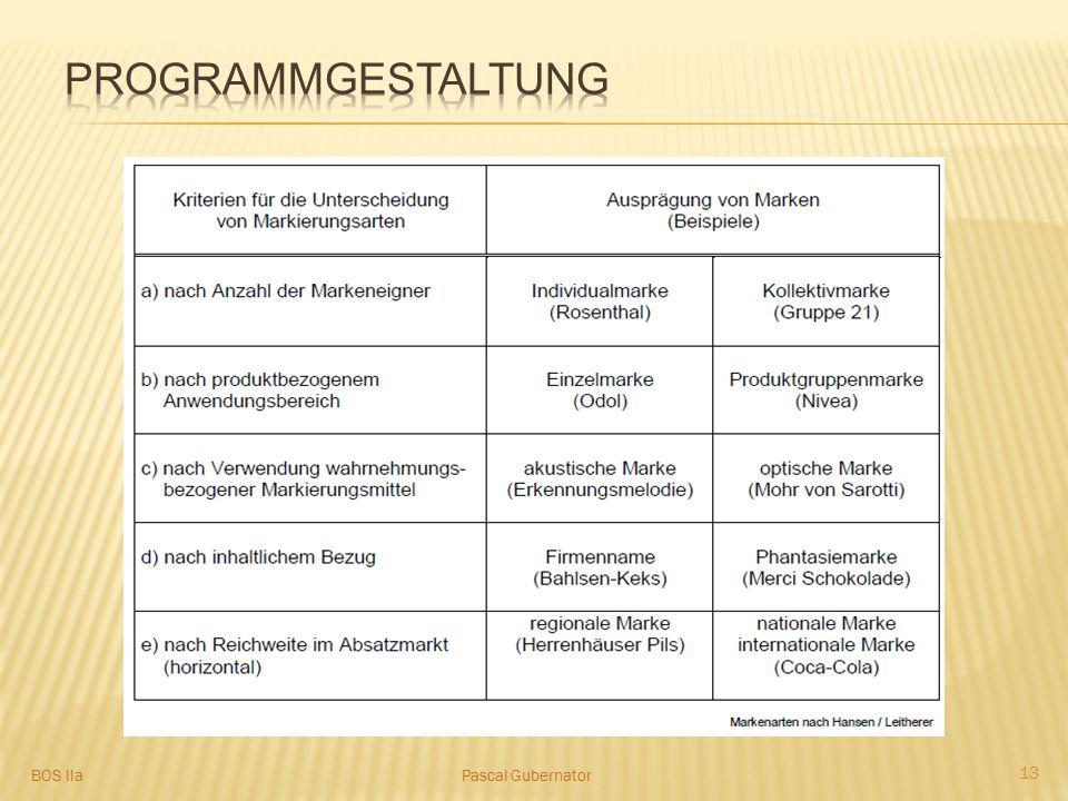 Programmgestaltung BOS IIa Pascal Gubernator