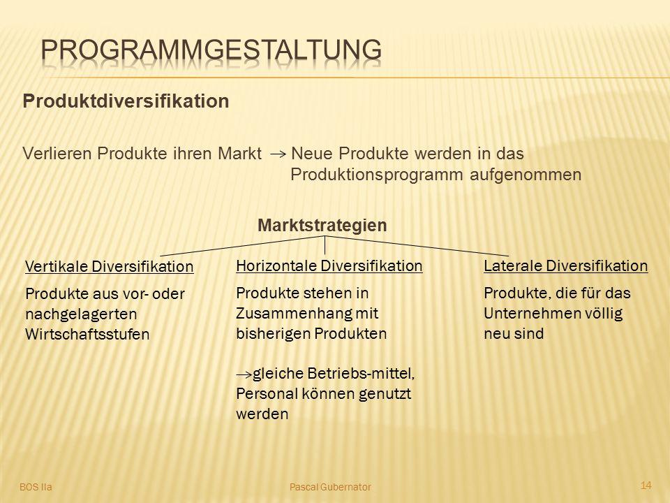 Programmgestaltung Produktdiversifikation