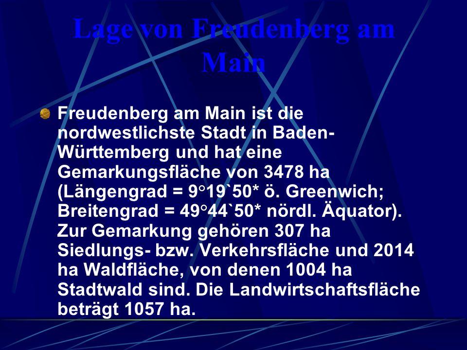 Lage von Freudenberg am Main