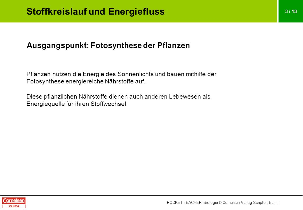 Stoffkreislauf und Energiefluss