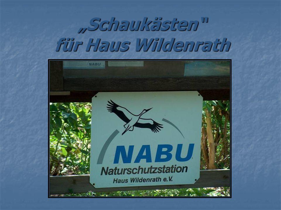 """""""Schaukästen für Haus Wildenrath"""