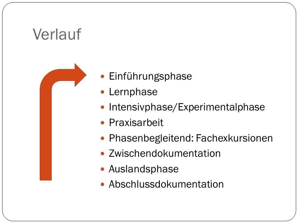 Verlauf Einführungsphase Lernphase Intensivphase/Experimentalphase