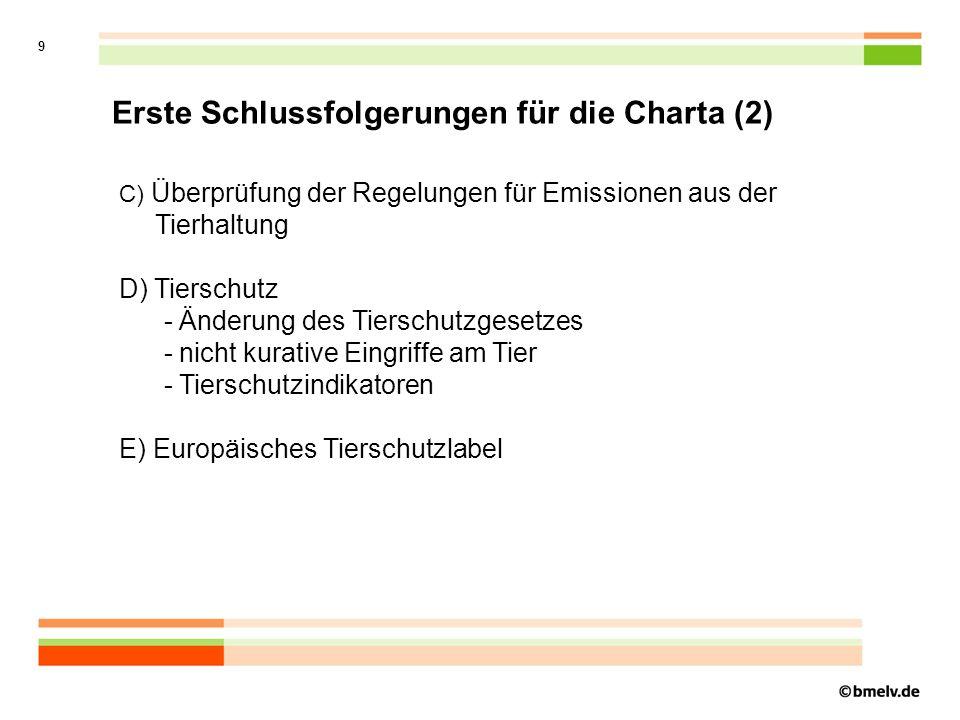 Erste Schlussfolgerungen für die Charta (2)